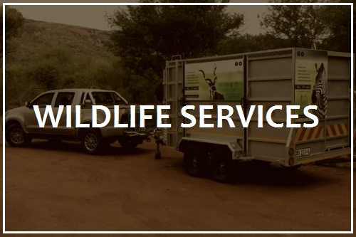 Wildlife services | Game transport