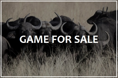 Game and Wildlife for sale